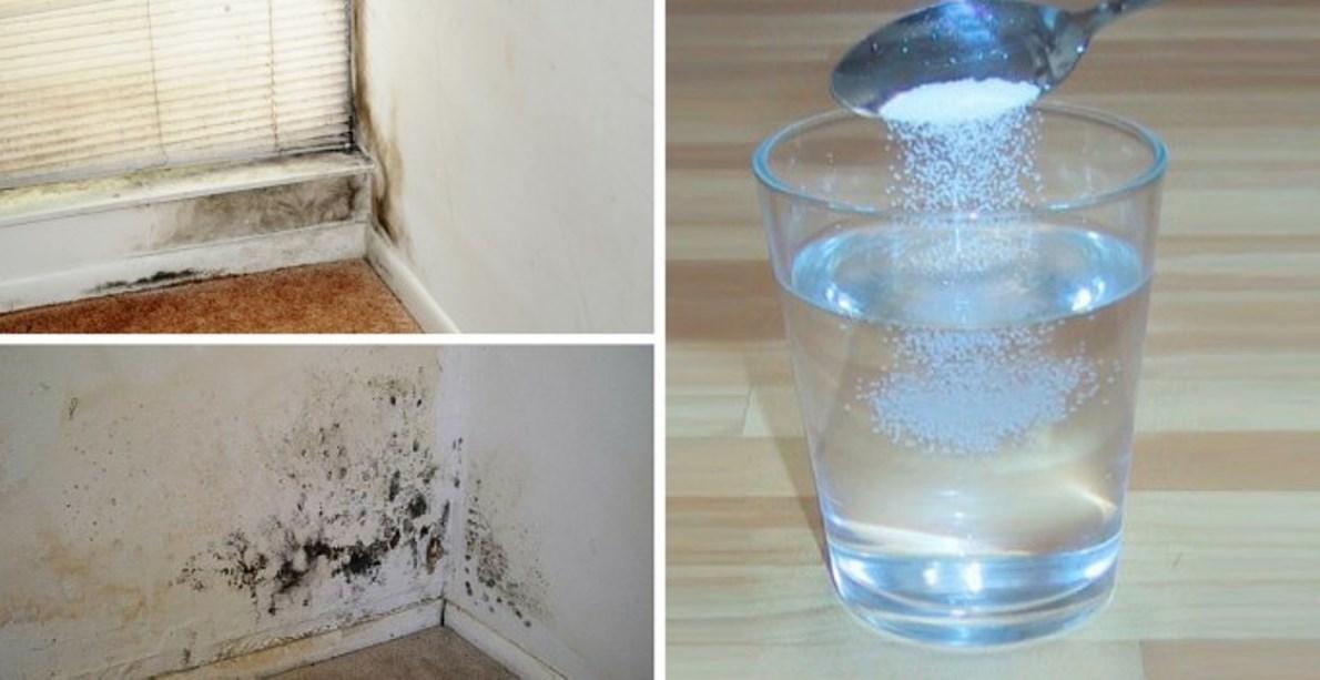 Come eliminare velocemente la muffa dalle pareti di casa - Come eliminare la muffa dalle pareti interne ...