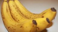 La banana è senza dubbio fra gli alimenti più ricchi di benefici e proprietà per la nostra salute. Purtroppo, però, non viene mangiata con la giusta frequenza, mentre dovrebbe essere […]